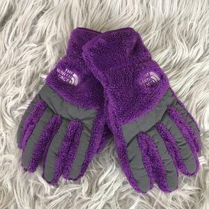The north Face Denali Purple Gloves